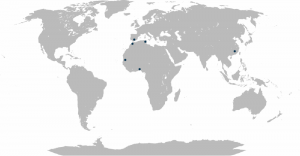 mapamundimembers